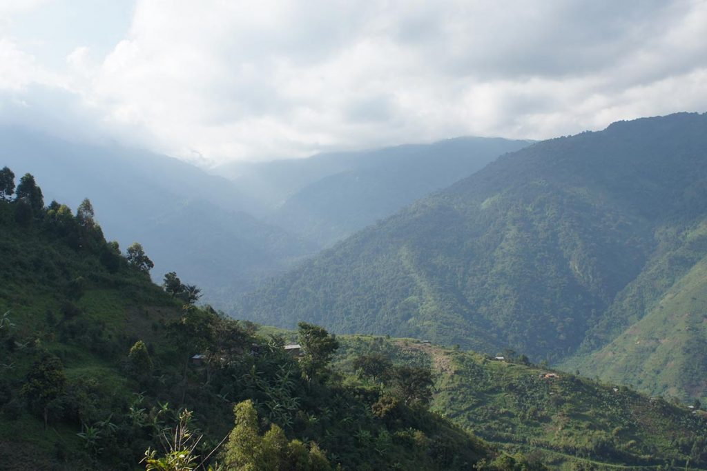 10 Days Hiking Rwenzori Mountains Safari
